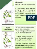 1. Plant Morphology_introduce