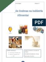 Utilização de Enzimas na Industria Alimentar