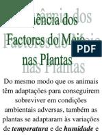 14 Factores Do Meio Planta
