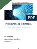 Programare Dinamica Atestat 2013