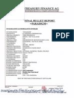 Paradigm Report