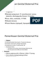 Pemeriksaan Genital Eksternal Pria