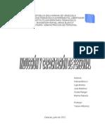 Informe Induccion y Capacitacion de Personal