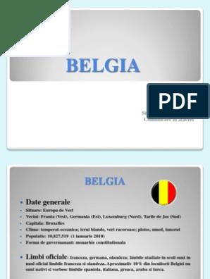 Reuniunea site- ului pentru prietenie Belgia