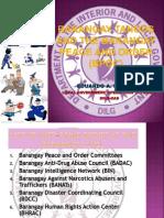 Barangay Tanods and the Barangay Peace and Order