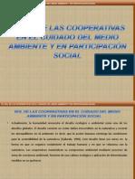 cooperativismo expo3