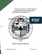 113TesisHoracioVlzla.pdf