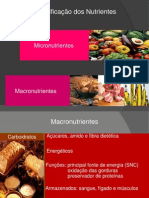 4a- Classificacao Dos Nutrientes Parte 1.