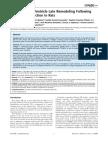 L-R Ventricule Fibrosis