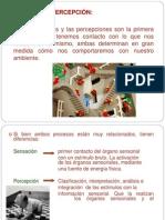 Presentación 2.ppt