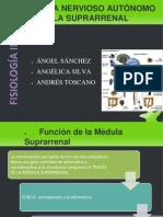 DIGNIDAD NUEVO FORMATO2 - copia.pptx