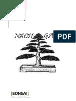 Bonsai Nachgan
