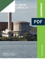 Riesgos de Operar Reactores CANDU 6 FINAL