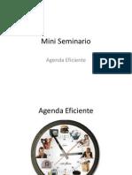 Mini Seminario Agenda Efectiva