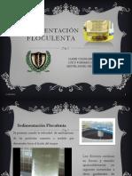 sedimentacinfloculentafinal-130215142856-phpapp01