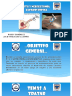 rtuynefrectomia-130605160616-phpapp02