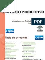 PROYECTO PRODUCTIVO SENA 2011.ppt