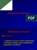 Ponto 8- Equistossomose