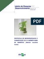 Cid et al 2007, Protocolo de micropropagação e conservação de 23 germoplasma de mandioca