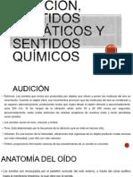 Audición, sentidos somáticos y sentidos químicos