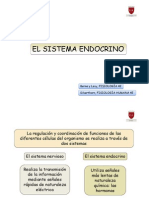 Sistema Endocrino I