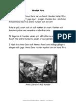 Lektion-se 10669 Microsoft Word - Hunden Rita Lasforstaelse