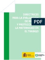 Directrices Protección Riesgo Embarazo