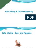 DBMS Data Mining