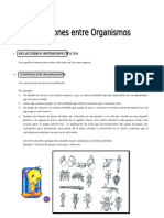 IV Bim - 4to. año - Bio - Guía 8 - Relaciones entre organism