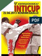 Programm Winticup2013