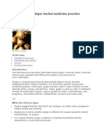Awareness to Ginger Herbal Medicine Practice