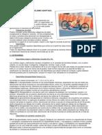 ciclismoadaptado-130216143024-phpapp02