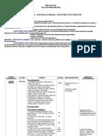S. 8 - Discopatia Lombara Si Genunchiul Post-operator