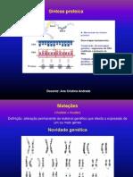 mutations1 biologia 12