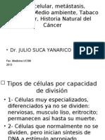 Ciclo celular, metástasis, Nutrición,