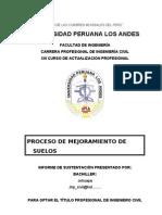 Informe de Sustentacion (Proceso de Mejoramiento de Suelos)
