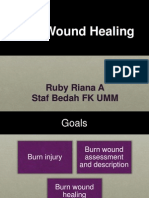 Burn Healing