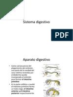 14 Sistema Digestivo