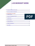 Manual de Word 2.0