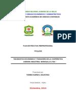 Plan de Practicas 2010_diagnostico Economico y Financiero de La Coopain Ver