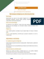 Experto estrategias político-organizativas (IDEAS PRINCIPALES) Primera parte