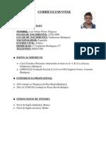 Curriculum Vitae Luis Felipe Flores