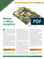 Biomasa-cultivos-energeticos