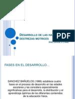 Desarrollo de las habilidades y destrezas motrices.pptx