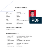 Curriculum Vitae 7