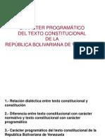 CARÁCTER PROGRAMATICO DEL TCRBV (j_07-03-09)