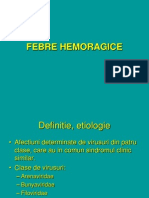 Febre Hemoragice Si Arbovirusuri