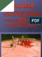 Malaria Prezentare 2010