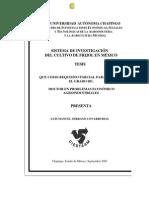 Serrano 2005. SISTEMAS DE INVESTIGACIÓN DEL CULTIVO DE FRIJOL EN MÉXICO