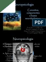 Conceitos Da Neuropsicologia